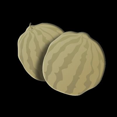 Cantaloupe season